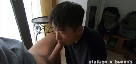 Gay Cock Sucking Marathon