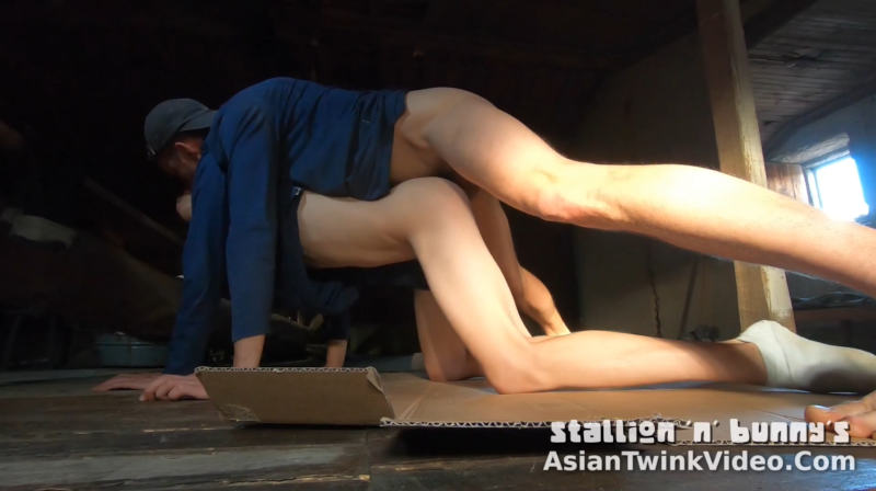 Young Chimney Sweep Gets Fucked!